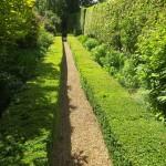 top-gardeners-gardening-cheltenham-00002