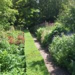 top-gardeners-gardening-cheltenham-00004