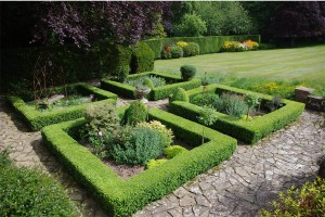 gloucester-surrey-top-gardeners-planting-borders